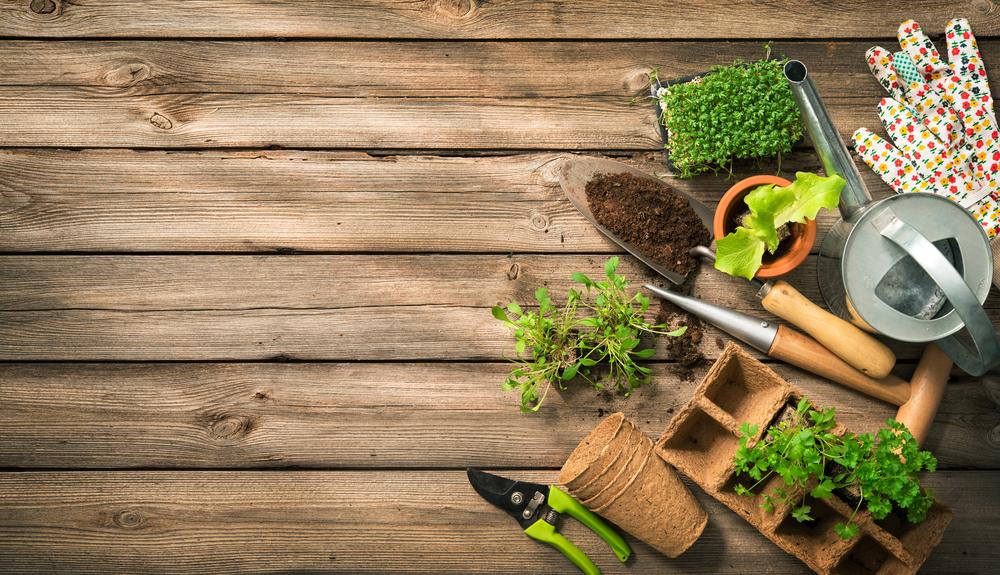 Serre chauffante pour le semis : présentation, utilité et ...
